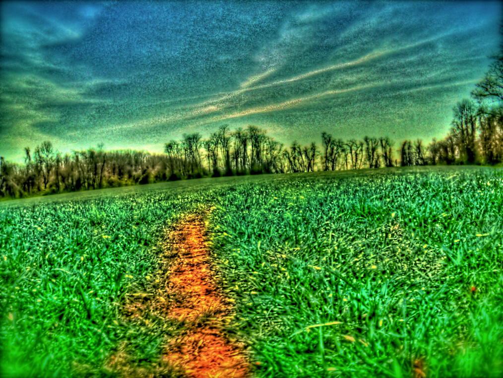 Robert Frost the Road Not Taken Analysis