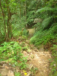 Very steep-it took me awhile to get down