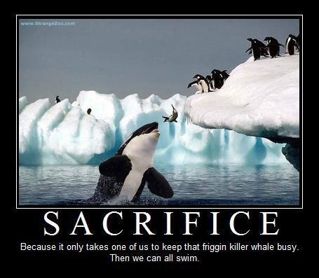 Sacrifice Jenny S Serendipity Art Blog