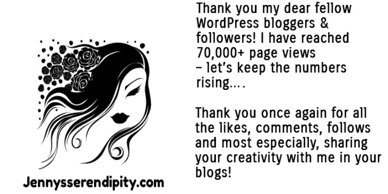 Thank you from Jennysserendipity.com