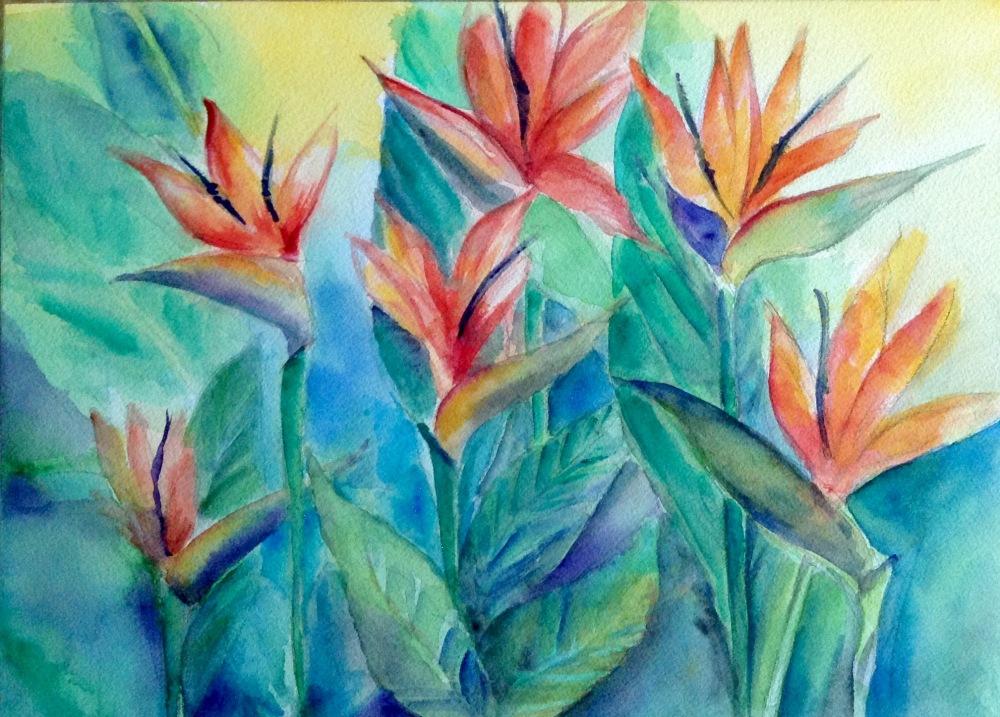 Dr. Elden Lumaniog –Flower Series